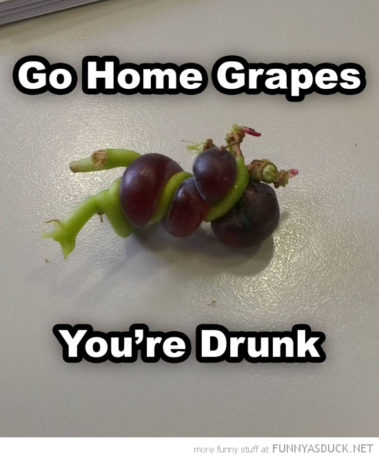 Funny_Grape _pics_11