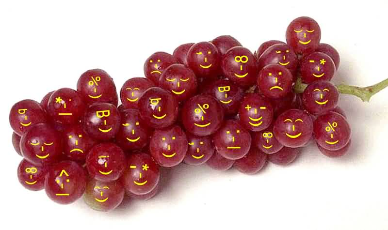 Funny_Grape _pics_3
