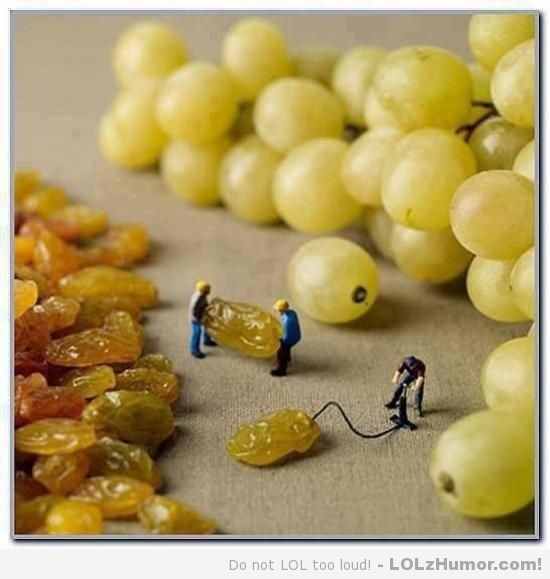 Funny_Grape _pics_6